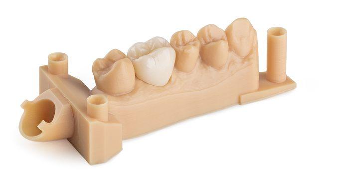 Resina Dental para modelos Formlabs